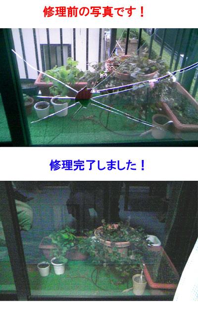 台風で割れたガラス